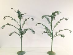 Vintage Italian palm trees  PKL THE CELLAR