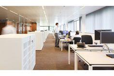 「rabobank office」の画像検索結果