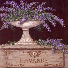Lucia Cabete: Imagens - Lavanda