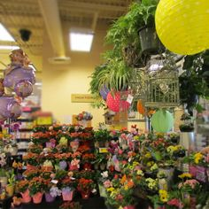 Floral Display at 10th & Reed. #ACMEMarkets