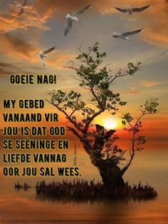 Afrikaanse Quotes, Good Night Blessings, Goeie Nag, Christian Messages, Good Night Sweet Dreams, Good Night Quotes, Special Quotes, Sleep Tight, Poems
