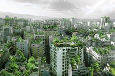 Beirut Wonder Forest...re-thinking city living. Our quality of life doesn't HAVE to suffer.