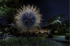 Chihuly Nights Art Exhibit / Dallas Arboretum | taken by GerhardEric