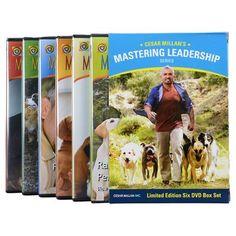 Mastering Leadership Series: Complete Six-DVD Box Set | Cesar Best Sellers -