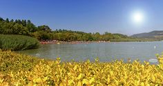 Lake Balaton, Hungary by Elenarts - Elena Duvernay photo Famous Places, Hungary, Travel Photos, Fine Art America, River, Summer, Prints, Poster, Outdoor