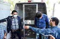 دستگیری سارقان مسلح  1.5 میلیون دلاری در میدان فردوسی