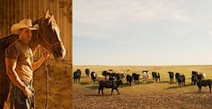 Image from http://www.alargueta.com/data/photos/463_1texas_cowboys_cattle.jpg.
