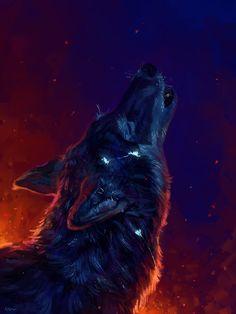 ⭐ #Wolf #Kυят #M๏ยภเгђ๏ ⭐