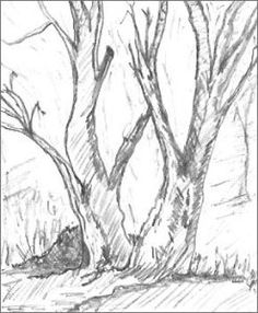 drawing simple trees with pencil - Google Search