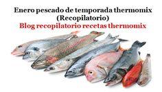 Recopilatorio de recetas thermomix: Enero pescado de temporada 2017 thermomix (Recopilatorio)