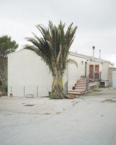 Linda Brownlee's personal observation of Sicilian village of Gangi