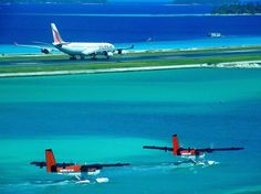 Maldivian Air Taxi Twin Otters with floats