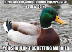 Good advice duck