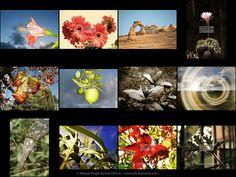 Nature © Miguel Angel Muñoz Pellicer www.photomamp.com