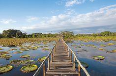 Pantanal/Brasilien | Schweizer Familie