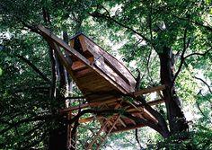 Baumhaus Tegernsee   Baumhaus   Pinterest   Bäume, Seen Und Baumhaus Das Magische Baumhaus Von Baumraum