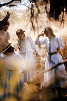 Picnic at Hanging Rock, 1975.