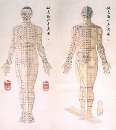 Acupuncture Point Chart