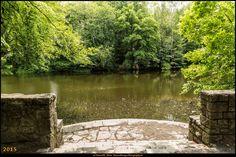 Steinbergpark (Bezirk Reinickendorf) 2 #Steinbergpark #Berlin #Deutschland #Germany #biancabuergerphotography #igersgermany #igersberlin #IG_Deutschland #IG_Berlin #ig_germany #shootcamp #shootcamp_ig #canon #canondeutschland #EOS5DMarkIII #5Diii #pickmotion #berlinbreeze #diewocheaufinstagram #berlingram #visit_berlin #reinickendorf #AOV5k #park