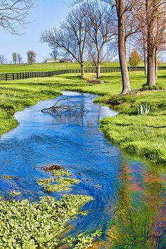 Springtime in Kentucky