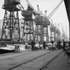 Dockers working a cargo of frozen meat at the Royal Docks.
