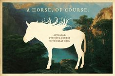 Fig. 161: A Horse, of course (2015)