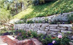 Broken Concrete Wall Recycled Concrete, Broken Concrete, Concrete Retaining Walls, Concrete Wall, Evergreen Vines, Hybrid Tea Roses, White Leaf, Garden Inspiration, Garden Ideas