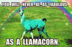 I want a Llamacorn.
