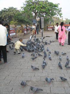 http://vedicgoddess.weebly.com/joy-maa-yatras.html