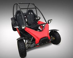 Complete Go-Karts and Frames 64656: Kandi 200Cc 2 Seater Go Kart- Kd-200Gkj-2 -> BUY IT NOW ONLY: $2599 on eBay!