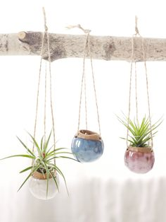 Set of Three Small Hanging Planters MADE TO ORDER.  Planters for Airplants in Oasis, Fire Opal, and White by CorPottery on Etsy