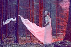 Love the red gels (?) used for this shot, plus the way the train of the dress is draped through the trees.