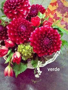 VerdeStaff - 花仕事ヴェルデ スタッフブログ