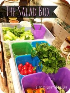 salad box: an easy way to have an instant salad bar at every meal!