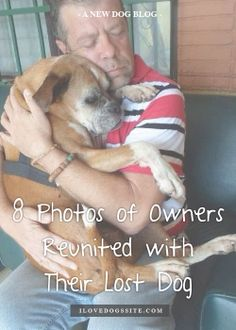 Grab a tissue, these photos are SO good! http://theilovedogssite.com/8-photos-of-owners-reunited-with-their-lost-dogs/?src=PIN_RCH_ReunitedLostDog_1-19-14