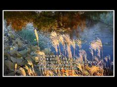 추억속으로 가는 음악다방 - 7집 - YouTube