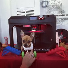After Turbo, the chihuahua born without front legs, captured the Internet's heart over the summer, he caught the attention of Mark Deadrick, who makes his living designing rocket parts.