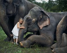 """[C'EST DANS LE MAG] """"Amelia et le carnaval des animaux"""" : un article à retrouver dans le #Fisheye24, en kiosques en ce moment ! [Photo: © Robin Schwartz] #photo #photographie #photography #robinschwartz #animal #animals #animaux #elephant #éléphant #girl #hug"""