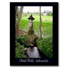 Rice Paddy, Temple, Ubud Bali, Indonesia Post Card