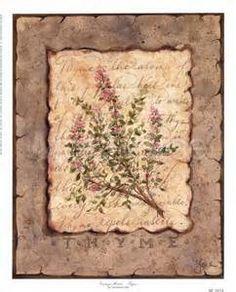 Vintage Herbs-Thyme Digital Print Poster by Constance Lael Online On Sale at… Framed Artwork, Framed Prints, Kitchen Artwork, Handmade Journals, Stretched Canvas Prints, Botanical Prints, Vintage Flowers, Vintage Images, Find Art