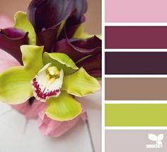 Design Seeds, for all who love color. Apple Yarns uses Design Seeds for color inspiration for knitting and crochet projects. Colour Pallette, Colour Schemes, Color Combos, Color Patterns, Palette Design, Color Balance, Balance Design, Design Seeds, Color Effect