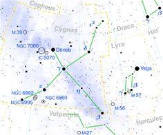 Cygnus constellation map.svg