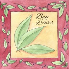 The Medicinal Benefits of Bay Leaves