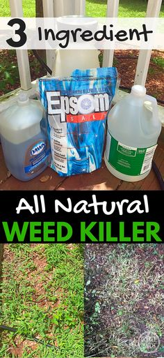 This simple recipe for natural weed killer not only saved my back but cost way less than the toxic brands at the store! My 5 acres is now manageable again!
