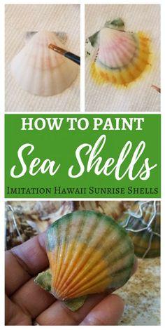 How to paint sea shells with acrylic paint - DIY Painted Sea Shells to look like imitation Hawaii sunrise shells. #paintedseashells #seashells #shells #coloredshells #seashellcraft