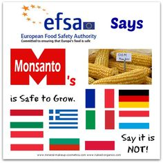 EFSA and Conflicting EU Government Views Food Safety, Infographics, Minerals, Author, Cosmetics, Foods, Sayings, Food Food, Lyrics