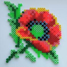 Poppy flower hama beads by nailashka - Pattern: https://www.pinterest.com/pin/374291419001915024/