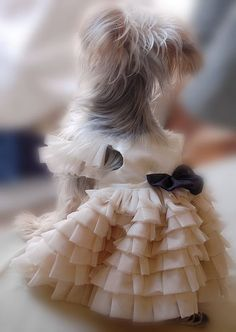 Items similar to Soft White Elegant Dress for pet, beautiful handmade dog dress. dog fashion on Etsy Puppies And Kitties, Lab Puppies, Poodle Puppies, Cute Dog Clothes, Dog Clothes Patterns, Animal Fashion, Dog Fashion, Dog Items, Girl And Dog