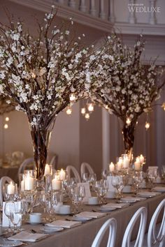 Blossom branches in tall vases - WedLuxe – Stephanie & Simon | Photography by: Amsis Photography