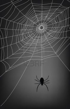 Spider Web Drawing, Lilies Drawing, Spider Costume, Homemade Halloween Decorations, Abstract Photography, Levitation Photography, Winter Photography, Macro Photography, Creepy Pictures